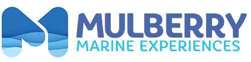 Mulberry Marine Experiences Logo